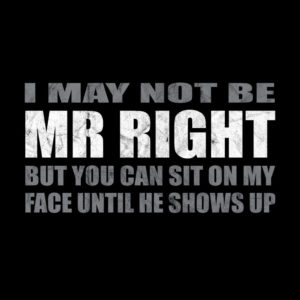 Not be Mr Right but you can sit on my face T-shirt